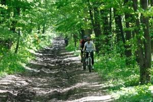traseu antrenament biciclete mtb padurea baneasa